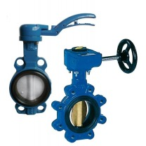 Cast Iron Butterfly Valve Available Online | Tameson