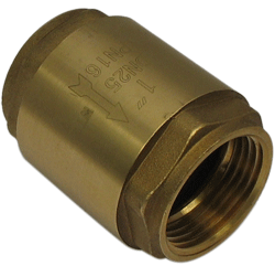 Typical inline spring-loaded check valve